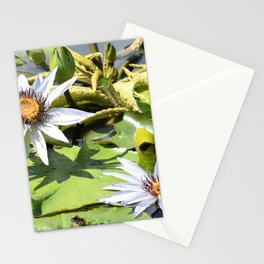 Flowers in the Lily Pond Stationery Cards