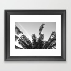 DC Palms Framed Art Print