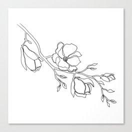 Single Line Magnolia Canvas Print