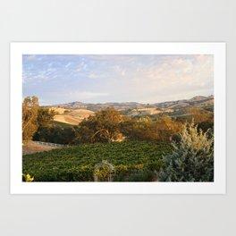 Paso Robles Hills Art Print