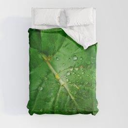Prosper Comforters
