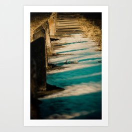 shadowed Art Print