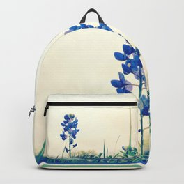 071 | austin Backpack