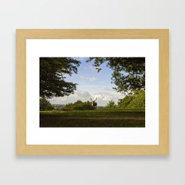 Reed Deer Overlook Framed Art Print