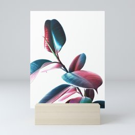 Colourful Rubber Leaves Mini Art Print