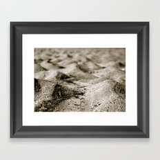Ant's Perspective  Framed Art Print