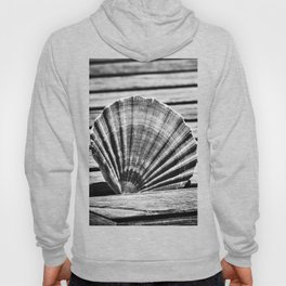 Scallop Shell and Timber Hoody