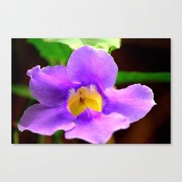 Random Flower Canvas Print
