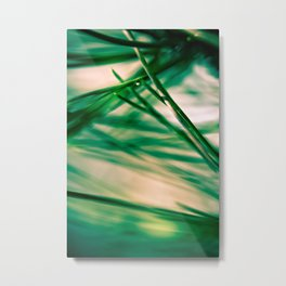 Pine Needles Metal Print