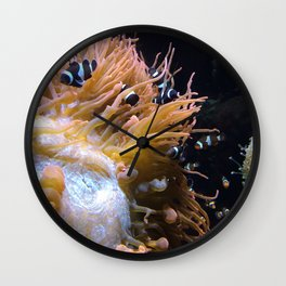 Clownfish 2.0 Wall Clock
