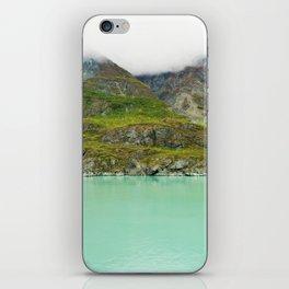 Glacier Bay Wilderness Alaska iPhone Skin