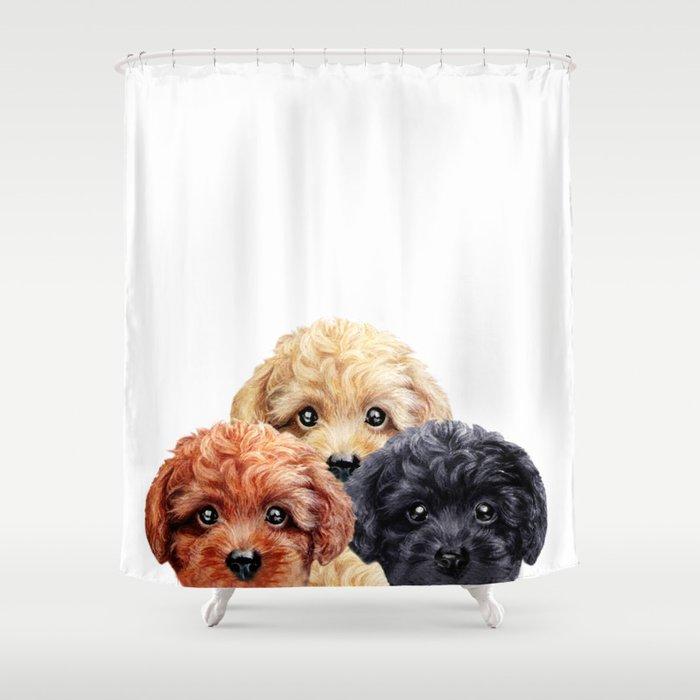 Toy Poodle Trio Dog Illustration Original Painting Print Shower Curtain