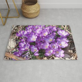 Watercolor Flower, Purple Crocus 01, Washington D.C., Spring Delights! Rug