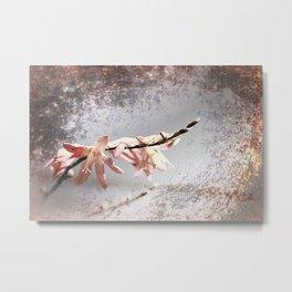 Elegant Coral colored Crocosmia Flowers Metal Print