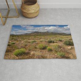 Painted_Desert 0211 - Southwest USA Rug