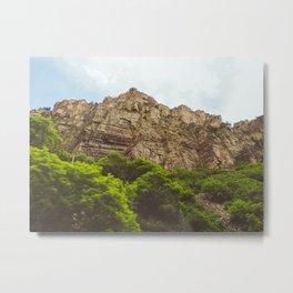Spring Cliffs Metal Print