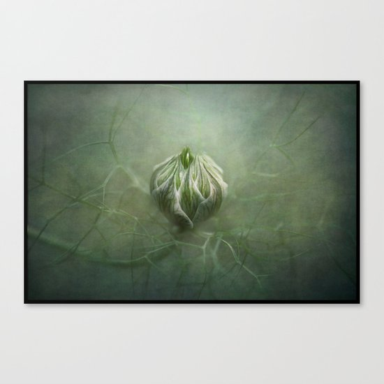Tangled in a sea of green... Canvas Print