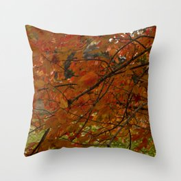 Red Maple 2017 Throw Pillow