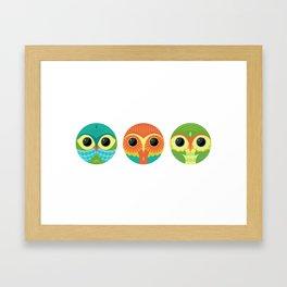 Tres Owls  Framed Art Print