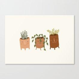 Little Face Vases Canvas Print