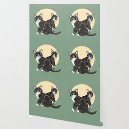 Lovely kitties Wallpaper