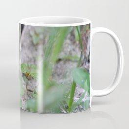 Peek-A-Boo, Mousie Coffee Mug