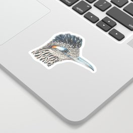 Roadrunner Glare Sticker