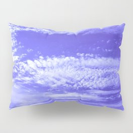 A Vision Of Nature Pillow Sham
