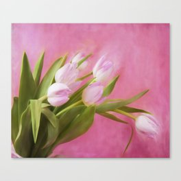 Graceful Pink Tulips Canvas Print