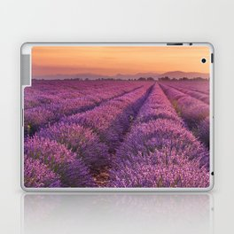 I - Sunrise over blooming fields of lavender in the Provence, France Laptop & iPad Skin