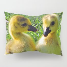 Cute Baby Canada Geese Stylized Photo Illustration Pillow Sham
