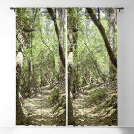 Enjoy the Journey Blackout Curtain
