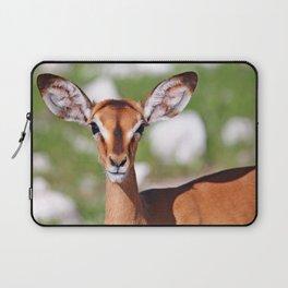 Young Impala, Africa wildlife Laptop Sleeve