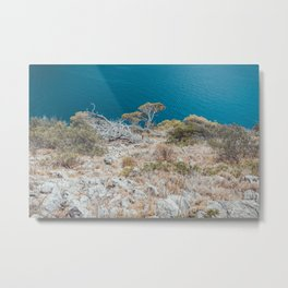 beautiful mountain next to the ocean with tropical trees Metal Print
