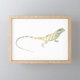 Lizard Framed Mini Art Print