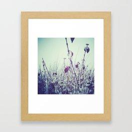Brrr.. Framed Art Print