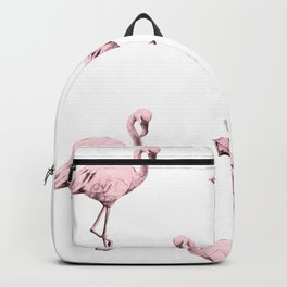 Simply Pink Flamingo in Pink Flamingo Backpack
