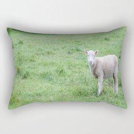 """Lamb """"Dang Paprazzi"""" Rectangular Pillow"""