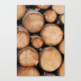 Logs Just Sit There  Canvas Print