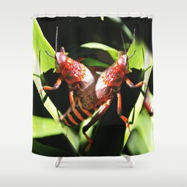 Red Hopper Shower Curtain