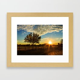 Sunset Through The Tree Framed Art Print