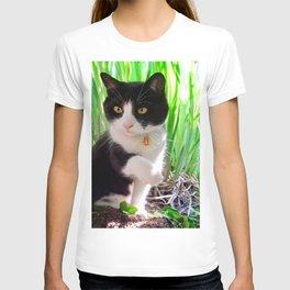 Orazio and the princess frog T-shirt