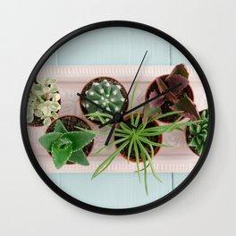 Mini potted succulents Wall Clock