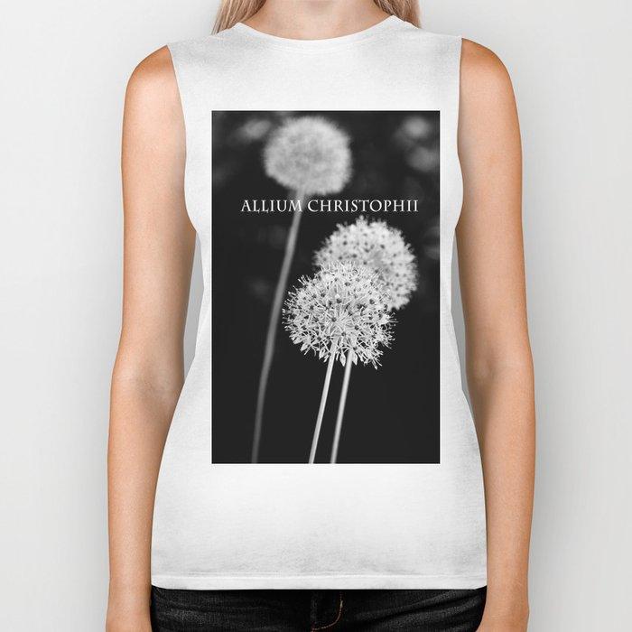 Allium cristophii Biker Tank