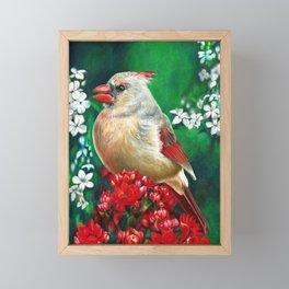 Cardinal Female Colored Pencil Bird Artwork Drawing Framed Mini Art Print