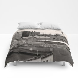 Ann Arbor City Roofs Comforters