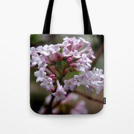 Beautiful Spring Blossoms - Koreanspice Viburnum Tote Bag