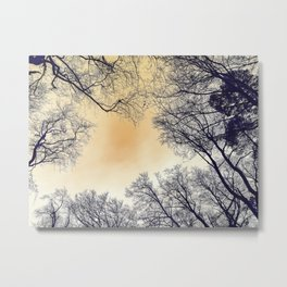 Infrared Forest Metal Print