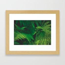 Garden Greens Framed Art Print