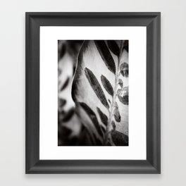 Secret Garden ~ No.6 Framed Art Print